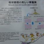 DSC03627 (2)